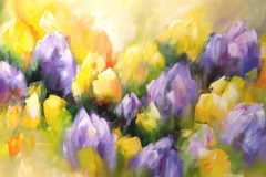gele-en-paarse-tulpen